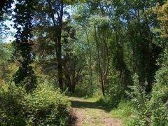 Parco di Gianola