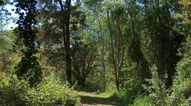 Parco di Gianola e Monte di Scauri