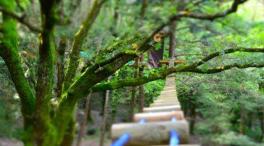 Woodpark, il parco Avventura dei Monti Aurunci
