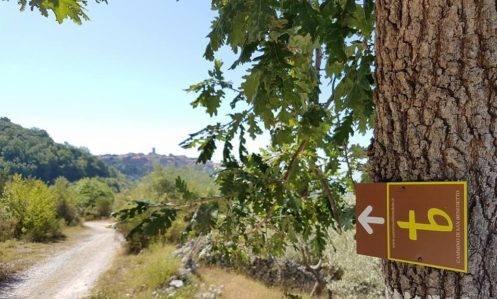 Il Cammino di San Benedetto: da Pozzaglia Sabina ad Orvinio