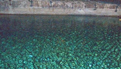 """La Sala dei 100 Giorni del Vasari e il lago """"sotterraneo"""" di Palazzo della Cancelleria"""