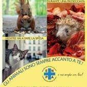 Giornata degli Animali