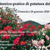 Corso teorico-pratico di potatura delle rose