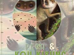 Peca & Koh Kisung - Double Solo Exhibition