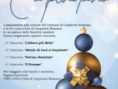 Concorsi per il Natale Carpinetano